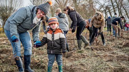Krommebeekbos krijgt er in één keer 9.160 bomen bij