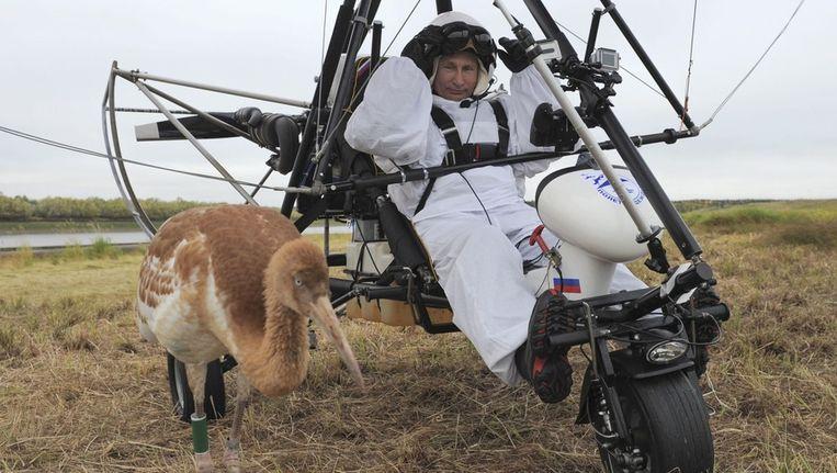 Poetin begeleidt een kraanvogel. Beeld epa