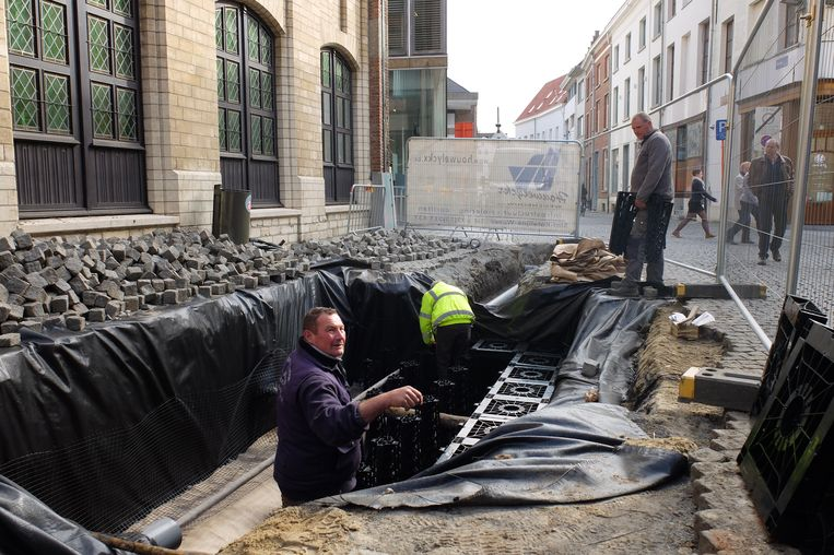 In de Hallestraat in Mechelen zijn sinds begin deze week de werken aan de gang voor de plaatsing van het eerste tree pit-systeem in België.