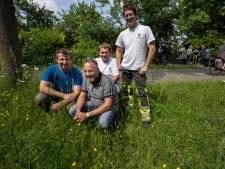 'Prachtlint' van streekeigen bloemen onthuld in Hardinxveld