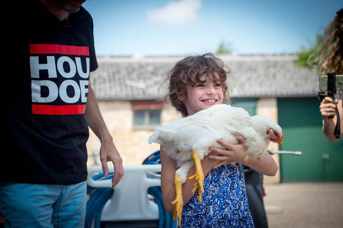 20-06-2018: de laatste fase van het doe-het-zelf kip, het slachten.