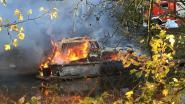 Brand verwoest motorboot aan Filips De Goedekaai in Gent