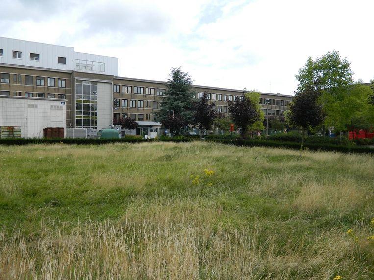 Het oude ziekenhuis AZ Alma geeft met het hoge gras en onkruid al een verlaten indruk.