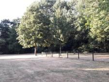 B en W sluiten bebouwing deel Annapark Hintham op voorhand niet uit