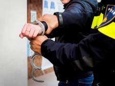 Politie zoekt mishandelde carnavalgangers