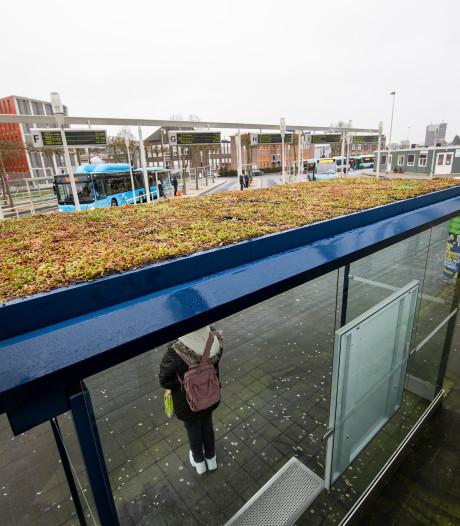Na Amsterdam, Utrecht en Breda heeft ook Apeldoorn nu bushokjes met een bijzonder dak