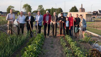 Nieuw volkstuinpark 'De Bommelaer' geopend