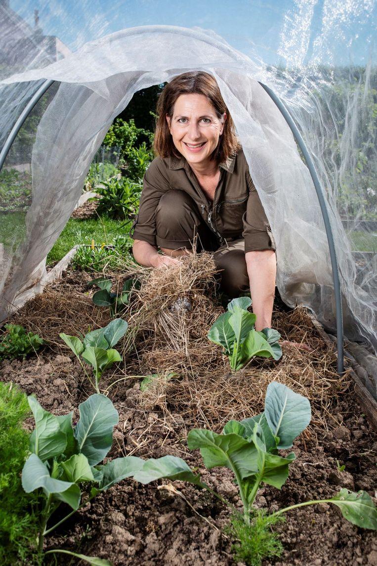Als jij je moestuin bedekt met mulch zoals hooi kan er geen onkruid kiemen