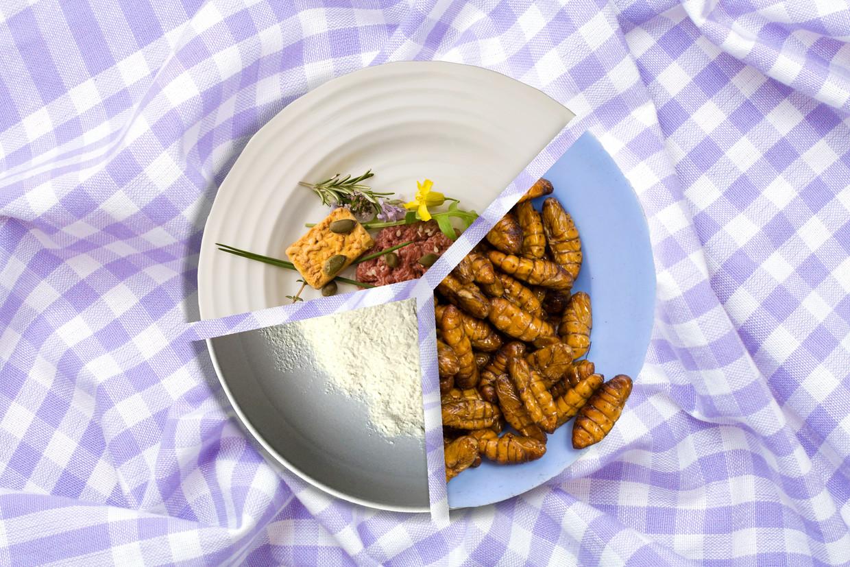 Kweekvlees, insecten of voedsel in poedervorm.