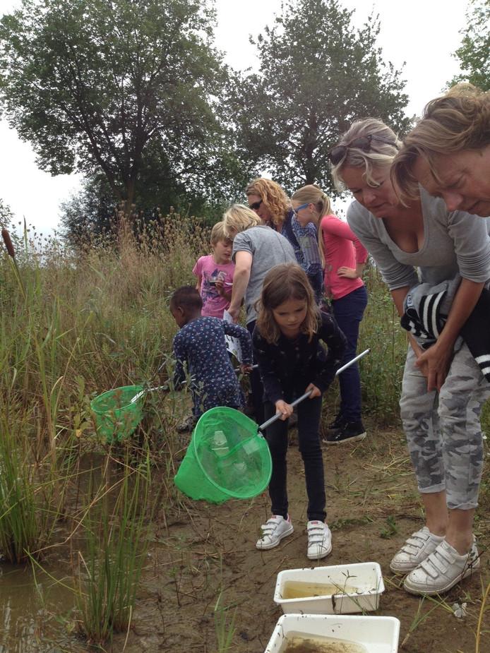 Isabel heeft allerlei waterdiertjes gevist uit het poeltje bij de Rugdijk.