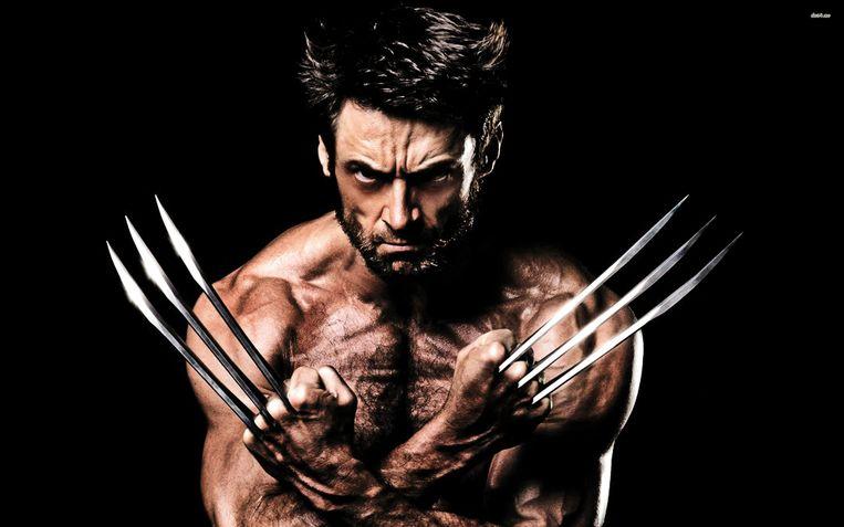 Wolverine Logan detour