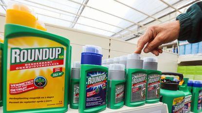 Haalt Monsanto woensdag de slag om glyfosaat thuis?