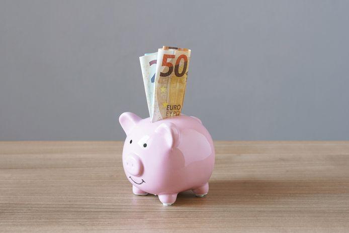 Er zit nog geld genoeg in de Roosendaalse subsidiepotjes, maar niemand wil het hebben.