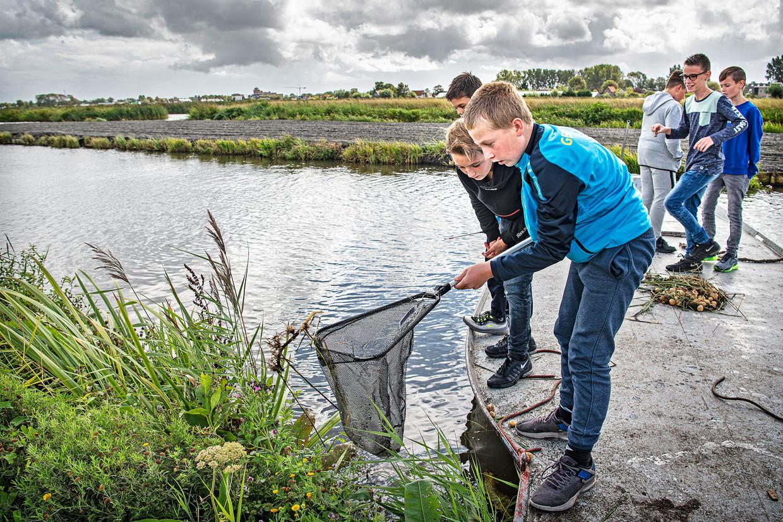 Viswedstrijd voor de jeugd in Broek op Langedijk: wie de meeste kreeften vangt, wint een buitenboordmotor.   Beeld Guus Dubbelman / de Volkskrant