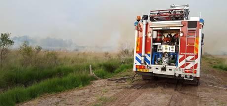 Natuurbrand in Nationaal Park De Groote Peel onder controle