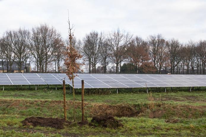 De provincie Gelderland wil nadrukkelijk beleid opstellen voor waar zonnevelden zijn toegestaan.