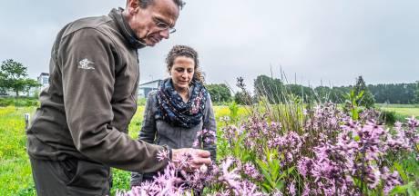 Eerste Herenboerderij van Rotterdam komt in Schiebroekse Polder