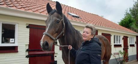 Paardenhouderij uit Kerkwerve in de verkoop