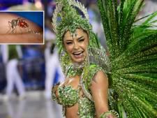 Experts vrezen explosie zika-virus bij carnaval Brazilië