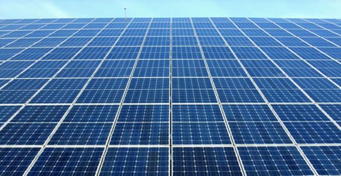 Zelfstroom in Den Bosch zegt de grootste verhuurder van zonnepanelen in Nederland te zijn.