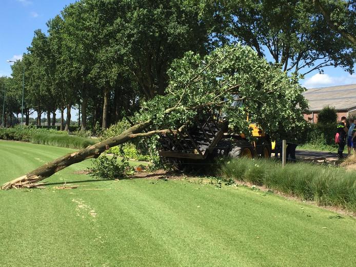 De loader reed een boom uit de grond en belandde in het weiland.