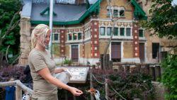 """Achter de schermen van de Zoo. Op pad met buffel- en vogelverzorgster Kirsten: """"Prachtig hoe de dieren ons vertrouwen"""""""