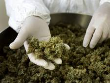 Burgemeester Maasdriel sluit weer een drugspand