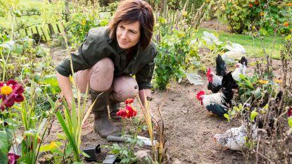 7 gouden tips om te tuinieren als je weinig tijd hebt