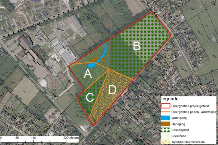 Ontwerp van het volledige project. Zone A: natuurspeelzone Dwergenbos