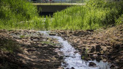 Vlaanderen maakt 75 miljoen euro vrij voor 'Blue Deal' tegen droogte