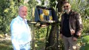 Gemeente ondersteunt landbouwers via het project metselbijen