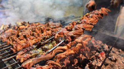 Barbecue op Den Dries of ander openbaar groen in Evergem? Boete tot 350 euro