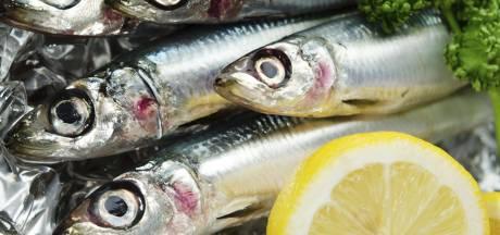 Vismarkt in AH Hulst na paar maanden alweer gesloten