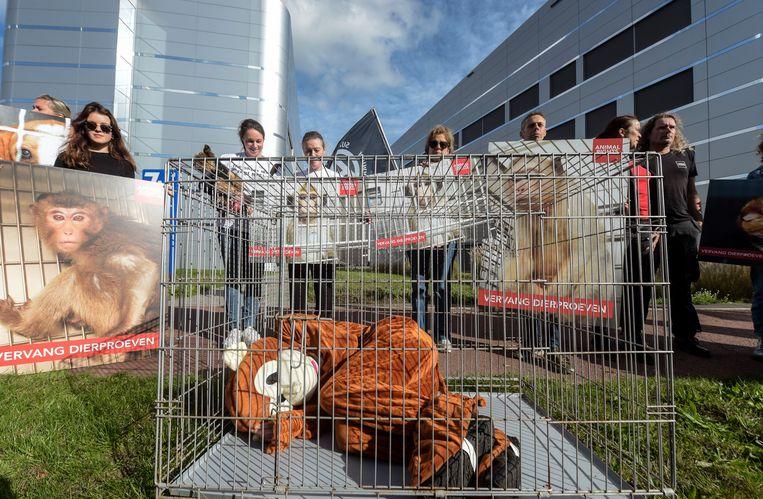 De activisten vragen de onmiddellijke stopzetting van alle dierproeven.
