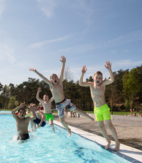 Tropenrooster in zwembad Het Ravijn in Nijverdal