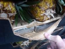 OM onderzoekt witwassen 1,2 miljoen euro in zaak 'ananasgate'