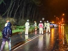 Omgevallen bomen en stormschade door zware windstoten in de regio
