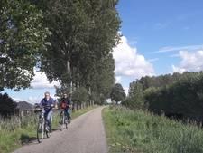 Populieren Haagdijk 's-Gravenpolder gaan tegen de vlakte
