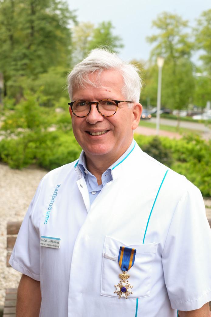 Henri Marres, Ridder in de Orde van de Nederlandse Leeuw