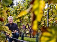 Eerste wijn uit Zurrikse grond