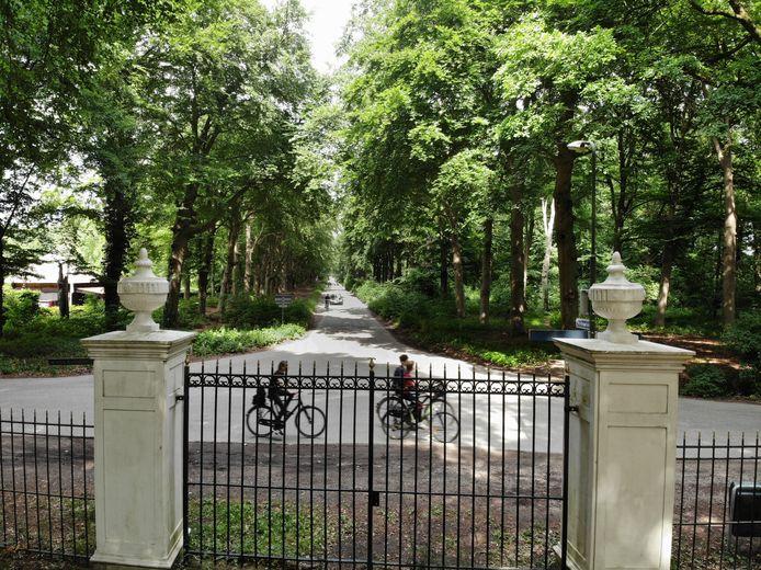 De bomenrij op Parc Broekhuizen in Leersum moet sneuvelen, als het aan de eigenaren ligt.