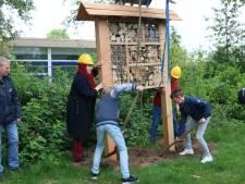 Leerlingen bouwen paradijs voor  bijen, vlinders en vliegen in Nijkerk
