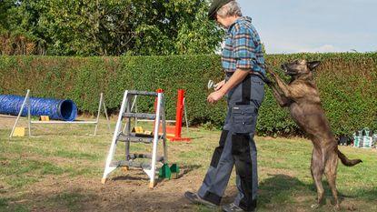 Honden tonen kunstjes bij opening hondenloopweide