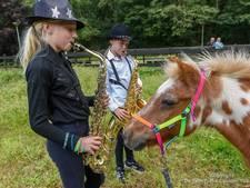 WAK in Hengelo: Pony's houden ook van muziek