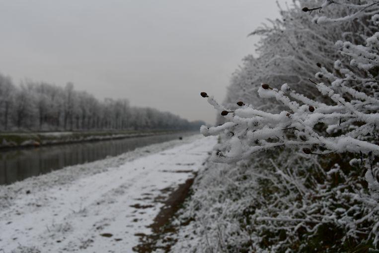 Aan het kanaal Briegden-Neerharen in Lanaken lag deze morgen een dun laagje sneeuw, maar het was geen échte sneeuw