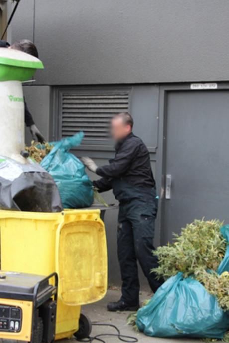 Wietkwekerij ontmanteld in woning Middelburg