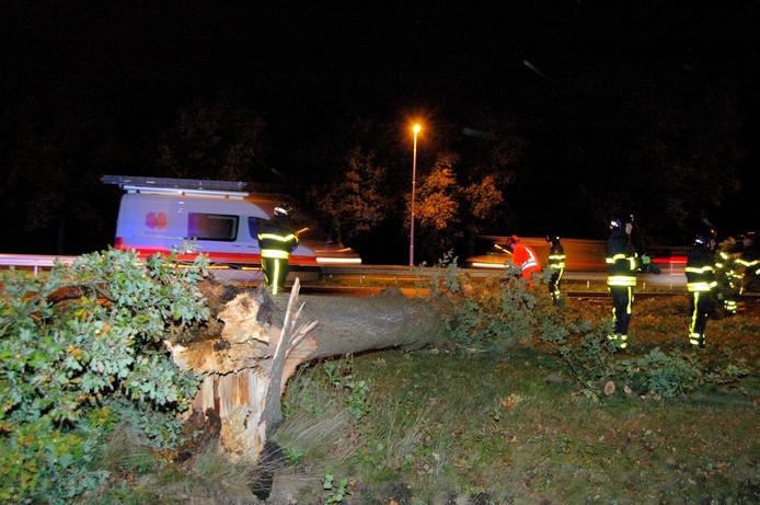 Omgevallen boom sluit N65 af Berkel-Enschot/Oisterwijk.