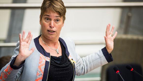 Bij Vlaams minister van Leefmilieu Joke Schauvliege heerst voorlopig radiostilte over de concrete plannen.