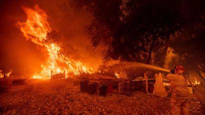 Grootste bosbrand ooit in Californië: brandhaard ter grootte van Los Angeles