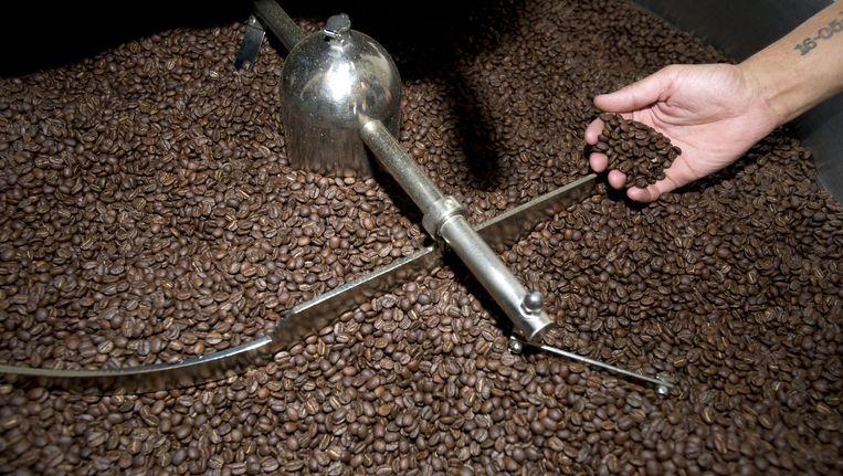 Koffiebonen in een koffiebranderij. Beeld anp